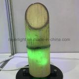 De Lichte Producten van Kerstmis van de Decoratie van RGB LEIDENE van de Kleur Tuin van het Bamboe