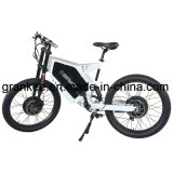 Moteur double vélo électrique vélo PAS haute vitesse de descente