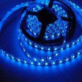 Striscia larga calda di vendita 3mm SMD LED di Alibaba per la finestra del negozio