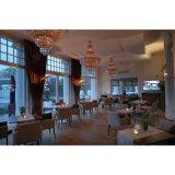 Для общего использования в коммерческих целях Ресторан / обеденном зале отеля стульями и столами