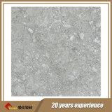 De Tegels van de steengroeve in China 30X30cm worden gemaakt die