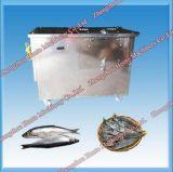 [هي فّيسنسي] كهربائيّة سمكة مقشرة