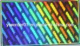 El holograma 2D3D holográfica (H-021)