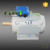 генератор постоянного магнита 10kw 200rpm с одновременным AC трехфазное