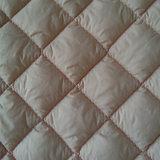 Tessuto normale 100% della Giù-Prova del cotone per il Duvet