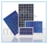 Solarprodukte 310W für angetriebenes Solarsystem