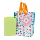 Bolso del regalo de cumpleaños, bolso del regalo, bolso de papel del regalo, bolsa de papel de Kraft, bolsa de papel