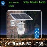 Bluesmart Bridgelux IP65 9W 12W éclairage solaire pour jardin