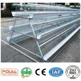 Heißer galvanisierter internationaler Standard-Geflügel-Geräten-Ei-Huhn-Schicht-Rahmen