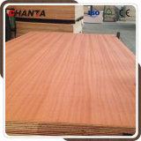 madera contrachapada de 2.5m m Sapele para el mercado de México de Chanta