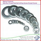 Rondelle plate de haute résistance de l'acier DIN125 de l'acier du carbone HDG F436/Stainless, rondelles ordinaires, rondelles de Mediun