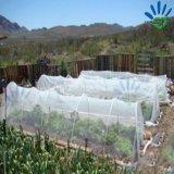 Materiale di tetto agricolo della tenda della serra del coperchio non tessuto della pellicola dei pp