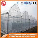 Película Grfeenhouse do PE da Único-Extensão de China com ventilação Sysytem