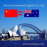 Het Verschepen van de Lucht van China Logistiek van Shanghai Sydney/Australië