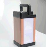 Lumière solaire de bureau de système de d'éclairage de la lanterne DEL de modèle merveilleux avec la qualité de chargeur d'USB
