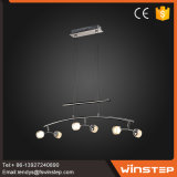 Suspension du fer LED2835 et lumière à la mode de combo de pendant