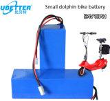 Lithium-Ionenbatterie-Satz LiFePO4 der hohen Kinetik-24V 10ah für E-Roller