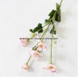 Margherita decorativa della seta artificiale del fiore del crisantemo africano per la decorazione domestica