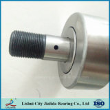 China El conjunto de cojinete de rodamiento de rodillos de aguja de la competencia (KR62 CF24)