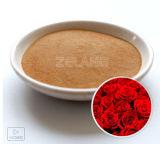 Fabricante de extracto del concentrado de Rose