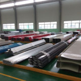 Tutti i materiali da costruzione d'acciaio di Structrue di generi da vendere