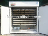Pequeña incubadora automática llena del huevo para los huevos para incubar