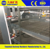New Type Pullet Chick Cage for The Chicken Farm