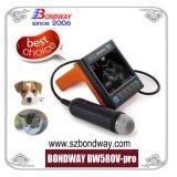 Ultraschall-Scan-Gerät, Veterinärultraschall-Scanner, Portable, Ultraschallfühler-Preis, niedriger Preis, Batterie, mobile Wiedergabe-Ultraschall-Handmaschine