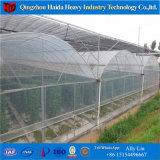 토마토를 위한 PC 폴리탄산염 헛간 갱도 Aquaponics 온실