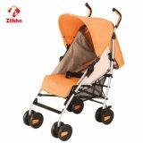 Baby Car com a estrutura e o assento