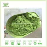 日本Matchaによって証明される優れた有機性Matcha粉
