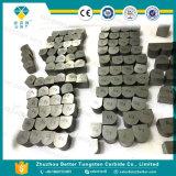 De Matrijzen van de Spijker van het Carbide van het wolfram
