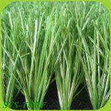 Grass artificial para Soccer (CPG-55)