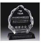 Trofeo su ordinazione di cristallo di vendita personale eccellente dell'incisione dei trofei