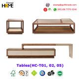 새로운 편리한 조화되고는 현대 거실 커피용 탁자 (HC-T01)