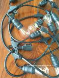 Venda quente da decoração da ampola da corda ST64 com aprovaçã0 do UL