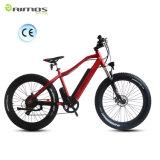 Grosser Energien-fetter Reifen-Gebirgselektrisches Fahrrad