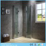 El pivote abisagró el rectángulo de la ducha de las puertas dobles con el vidrio Tempered (9-3390)