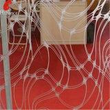 De zuur Geëtster Spiegel van /Decorative van de Spiegel van /Art van het Glas van de Spiegel