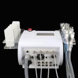 Gewicht-Verlust Velashape Fett Schönheits-Salon-Gerätkim-8 Cryotherapy, welches die Ultraschallhohlraumbildung-Karosserie abnimmt Maschinen-System einfriert
