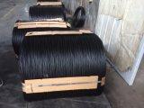 Hot ventes ! Le fil recuit électro-galvanisé noir sur le fil