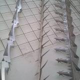 De gegalvaniseerde Aar Met weerhaken van de Veiligheid van de Spijkers van de anti-Klim van de Aar van de Muur van het Staal/van de Aar van de Vogel