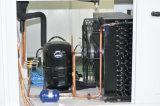Hochs und Tiefs-Temperatur-klimatische Klimaprüfungs-Maschine