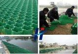 Plastikgras-Rasterfeld verwendet für Auto-Parken