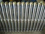 3 ans de garantie de l'acier inoxydable 304 de C.C 12V de pompe à eau solaire pour l'irrigation