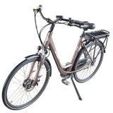 도시 함 전기 자전거 36V10ah 모든 지형 700c 350W 바닷가 함 전기 자전거