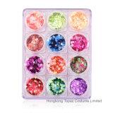 Bergkristallen van het Kristal van de Spijker van het festival de Decoratieve Geplaatst multi-Grootte de Scherpe Bodem Gemengde Kunst van de Spijker van de Kleur voor Manicure DIY (NR-02)