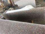 La Cina G603 naturale, G654, G664, mattonelle di pavimento del granito di mancanza