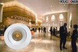 50watt economizzatori d'energia LED giù si illuminano per l'hotel
