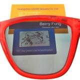 Сделано в Китае хорошего качества солнечные очки с полярной Tac объектива